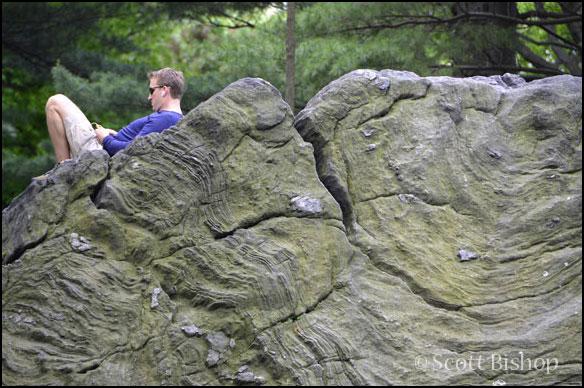 Central Park Quiet Zone